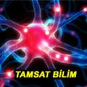 TAMSAT-Bilim web sayfası